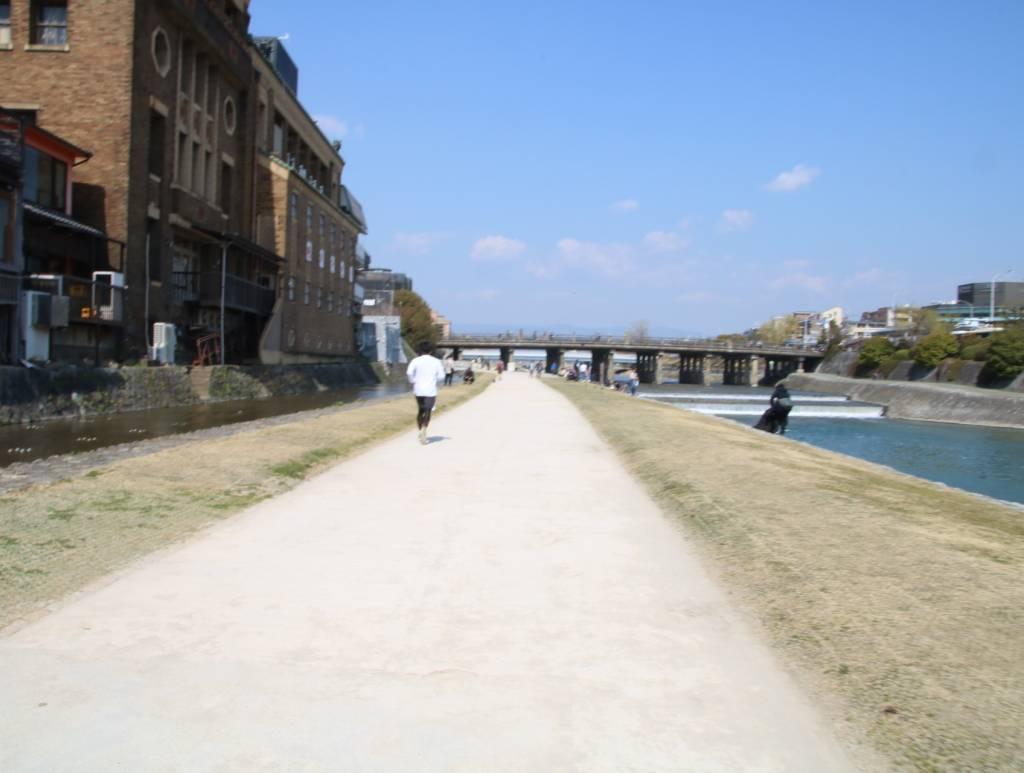 鴨川沿い(ジョギング、サイクリングロード)