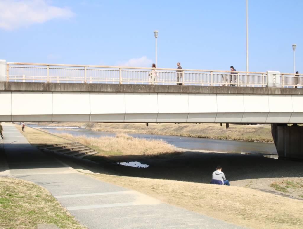 鴨川沿い(丸太町)